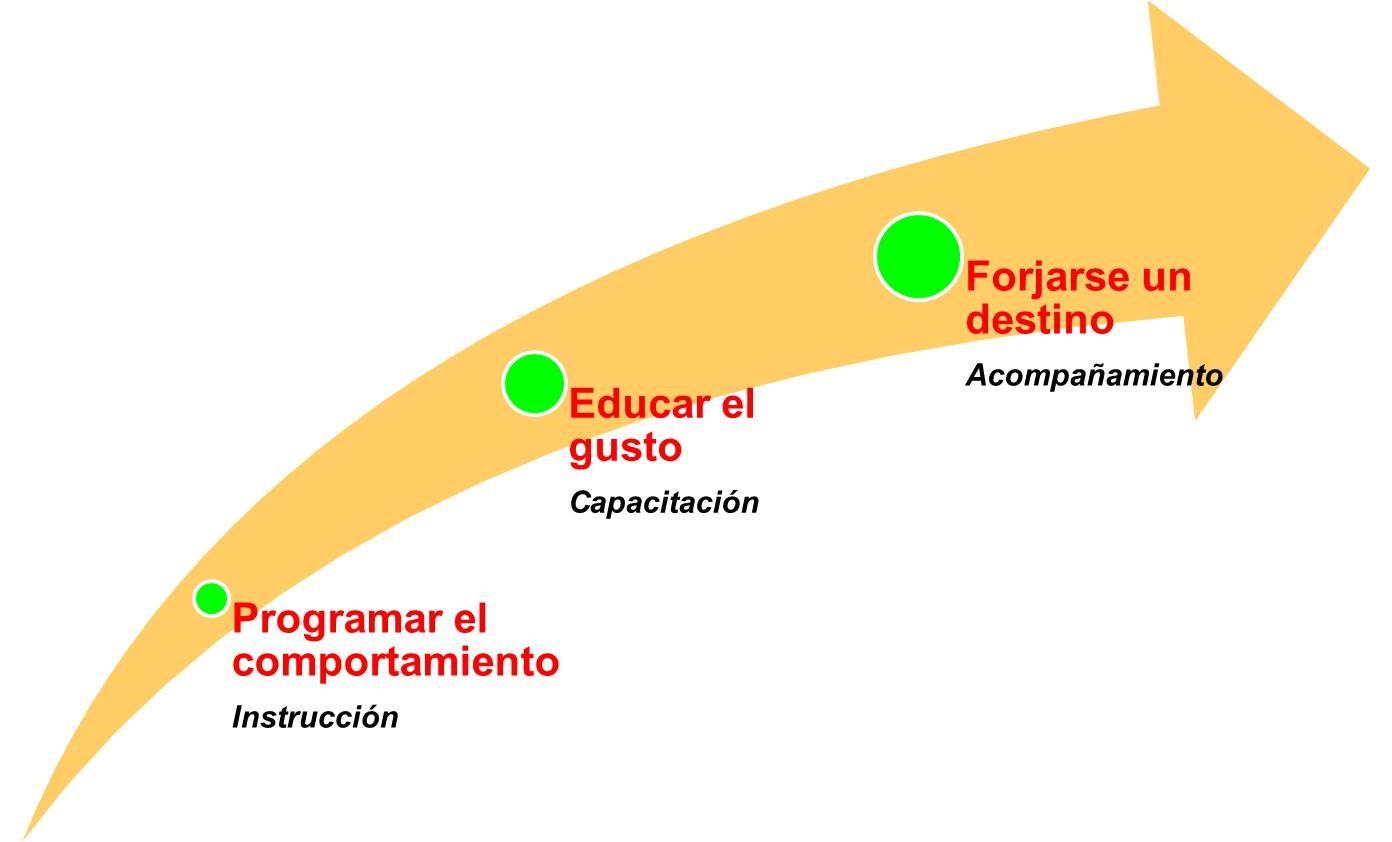 proceso educativo
