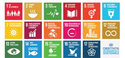 Las universidades como líderes en la implementación de los ODS